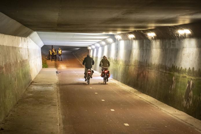 Eind 2019: vijf mensen uit de Helmerhoek patrouilleren bij het tunneltje aan de Oude Dijk.