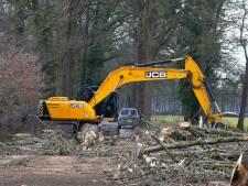 Provincie wil vinger in de pap houden bij bomenkap in Boekel