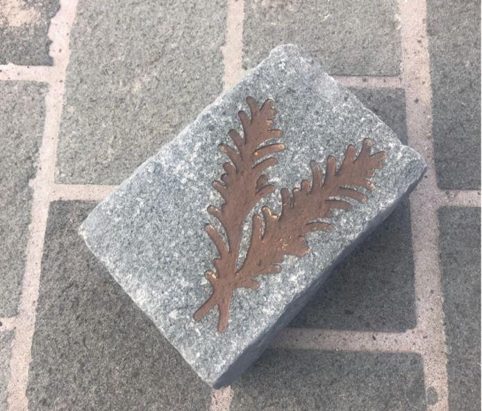 In sommige kasseistenen in de vernieuwde Rozemarijnstraat kan je het silhouet van een rozemarijnplant terugvinden.