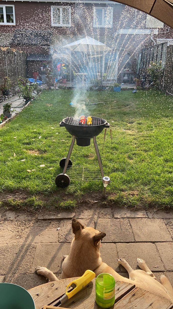 Claudia Peters uit Harskamp geniet van een barbecue, terwijl haar hond alles scherp in de gaten houdt.