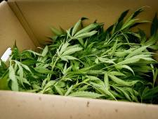 Vijf aanhoudingen vanwege grote drugsvondst in Bergen op Zoom, motor en bestelbus in beslag genomen