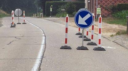 Lubeek reageert op beslissing afsluiting Panoramalaan in Bierbeek met eigen wegversmalling aan de Heide