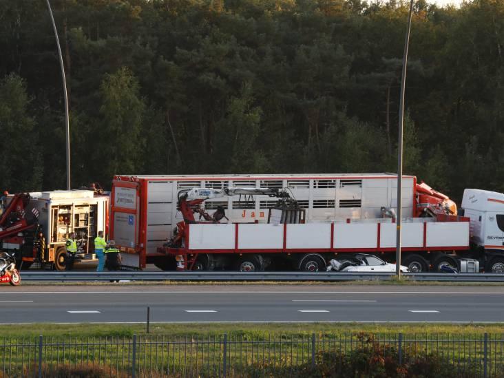 Trucker die Helmonder doodreed 'lette volstrekt niet op'
