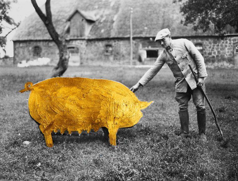 In de bundel Waarvan akte laat Onno Kosters zien dat hij zich de zomers op het platteland in de Achterhoek herinnert. Beeld Getty/ bewerking studio V