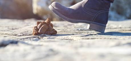 Zerotolerancebeleid blijft in Rijssen-Holten middel tegen hondenpoepoverlast
