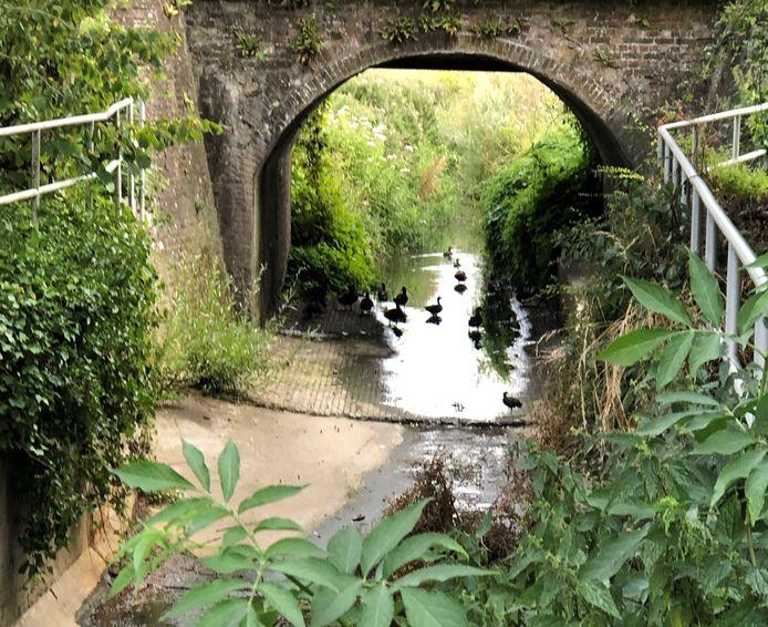 Enkele Ieperse waterlopen staan zo goed als droog.