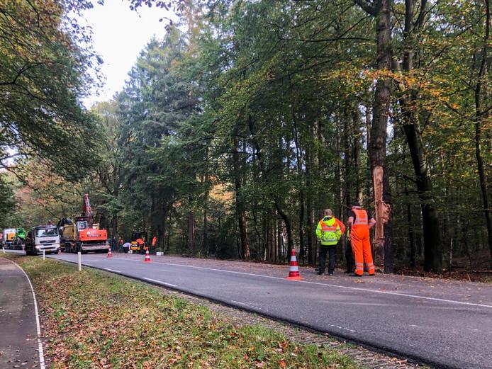 Een aannemer graaft grond af waar diesel in is gelekt. De schade aan de bomen is groot.