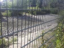 Brandweer brengt droogliggende zwanen verkoeling in Almelo