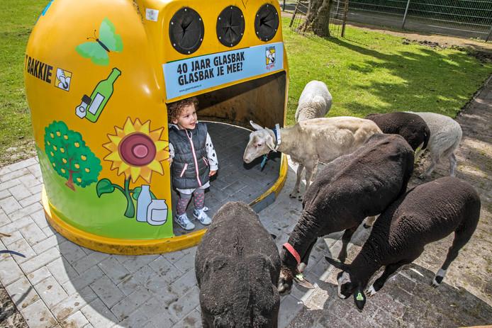 De gerecyclede glasbak op De Reigershof dient meteen als schuilhut voor bezoekers en boerderijdieren.