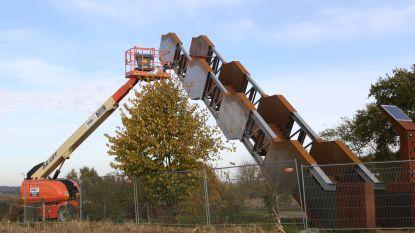 Vlooybergtoren krijgt oude glorie langzaam terug