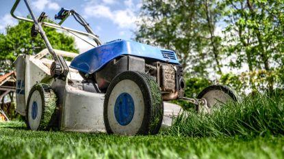 Tijd om je grasmat te verzorgen: dit zijn de beste grasmaaiers voor jouw gazon