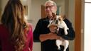 """Ed O'Neill et Beatrice, alias """"Stella"""", son animal de compagnie à l'écran."""