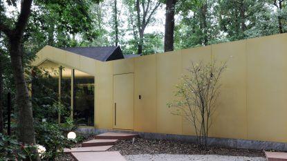 Lorenzo en Robin verbouwden een klassieke chalet in het bos tot deze waanzinnige woning