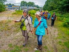 Jungle in Eindhoven en oog voor straatkunst ontdekt tijdens stadssafari