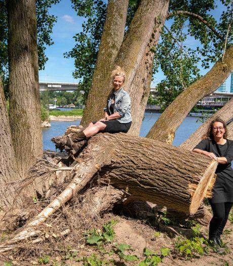 Bewoners woonbootenclave en milieudefensie hopen dat beverfamilie Arnhems bouwproject ondergraaft