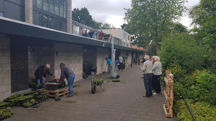 Samen aan de slag in Kattenbosch voor meer groen in de wijk