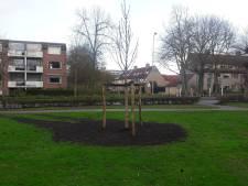 Veenendaal heeft nu al zijn Anne Frankboom geplant