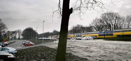 Treinverkeer op lijn Arnhem-Utrecht ernstig ontregeld in spits na aanrijding