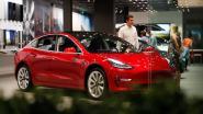 Tesla komt volgende week met 'camerabewakingsmodus' en 'hondensysteem'
