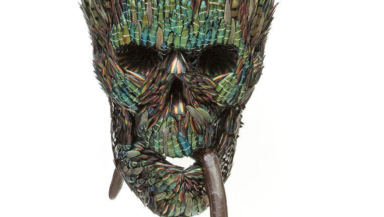 (2) Jan Fabre, Doodshoofd met verfkwast(synthetisch haar), 2013. Beeld X