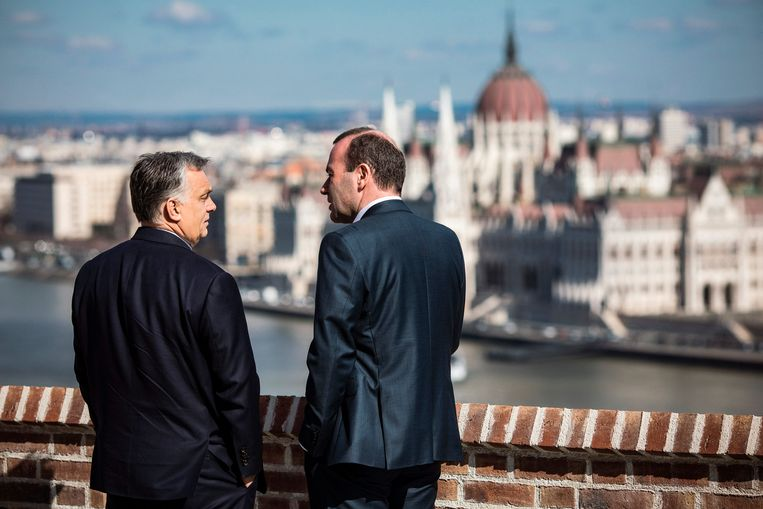 Premier Viktor Orbán kijkt met Manfred Weber, vooraanstaand lid van het Europees Parlement, vanaf de Boedaburcht uit over het historische centrum van Boedapest. Beeld EPA