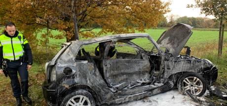 Automobilist zwaargewond na frontale botsing met busje op N617 bij Sint-Michielsgestel, weg dicht
