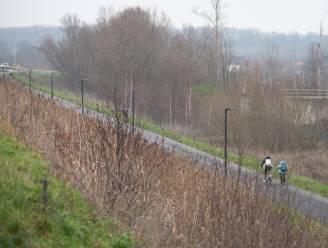 Nieuw mobiliteitsplan moet woonwijken in Oudenaarde leefbaarder maken: is ringweg oplossing om het drukke verkeer uit de stad weren?