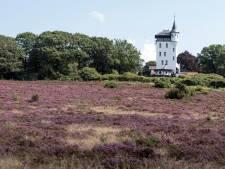 Overijssel wil honderdduizenden euro's  bijdragen voor Sallandse Heuvelrug als toeristenmagneet