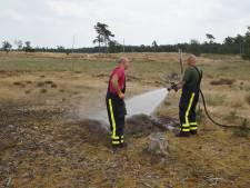 Wandelend stel ontdekt kampvuur in Loonse en Drunense duinen
