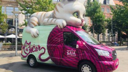 """GAIA-catmobile houdt halt op Haspengouw Markt: """"Onze kattenpopulatie op een diervriendelijke manier inperken"""""""