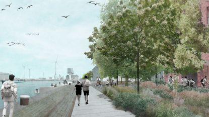 Stad keurt voorontwerp heraanleg New Yorkkaai en Talinnstraat in de Cadixwijk goed: maximale inzet op groen en behoud 'ruwe' havenkarakter