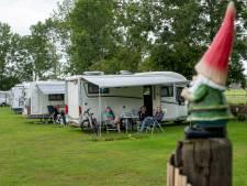 Gras van Campertuin in Oldebroek werkt als een magneet voor campergasten