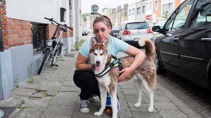 Honden afgenomen van man die buurt terroriseerde: rust keert terug op hondenweide