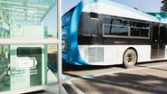 Brussels Airport bestelt 30 Chinese e-bussen: 33% goedkoper dan Vlaamse tegenhanger