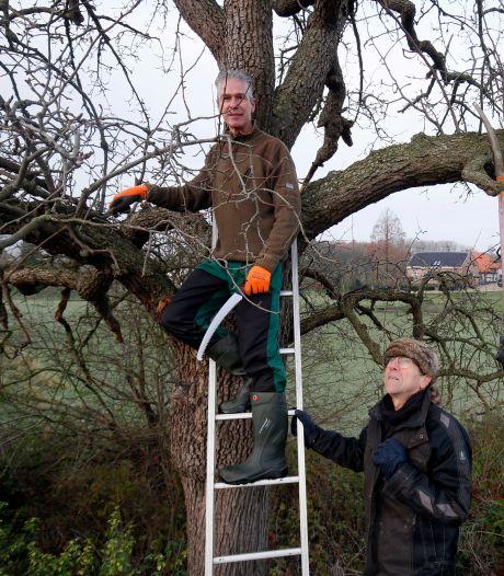 Zo wordt het voormalig kasteelterrein in Herwijnen opgeknapt