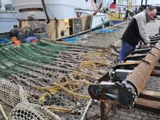 Ook Vlissingen voor pulsvisserij