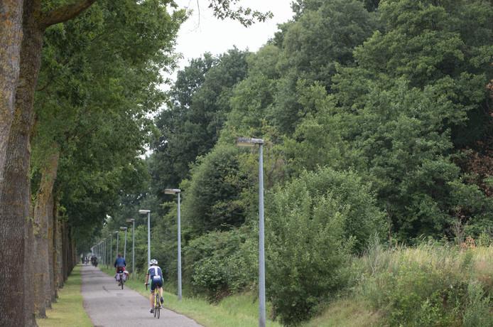 Dassenbos (rechts naast fietspad) waar nieuwe weg gepland is