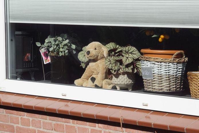 Kinderen kunnen tijdens een rondje kijken waar er allemaal beren - of andere knuffels - voor het raam staan.