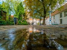 Buurtbewoners woedend over aanpak Agathaplein bij Prinsenhof