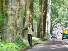Schelmseweg in Rozendaal wordt veiliger voor overstekende scholieren
