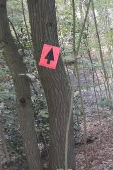 Rit door beschermde natuur: Leyetocht vergat mountainbiketocht aan te melden