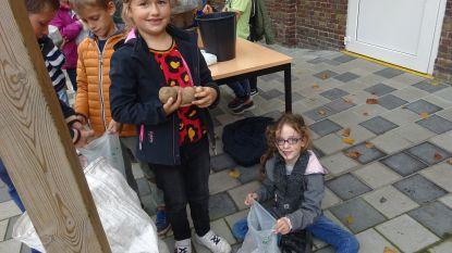 Regenboogschool verkoopt aardappelen uit schoolmoestuin