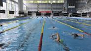 Flanders Swimming Cup brengt internationale zwemtop naar Wezenberg