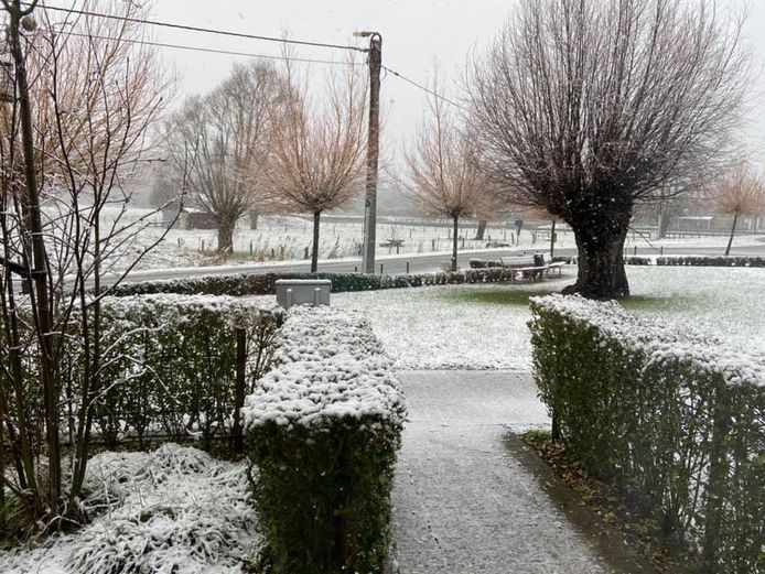 Help sneeuw!