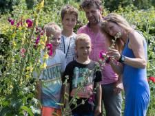 Open Tuinendag geeft kans om andermans tuin te bekijken in Lemelerveld