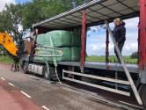 Zieke Flevolandse konikpaarden krijgen 30.000 kilo hooi vanuit Nederland: 'De situatie is hartverscheurend'