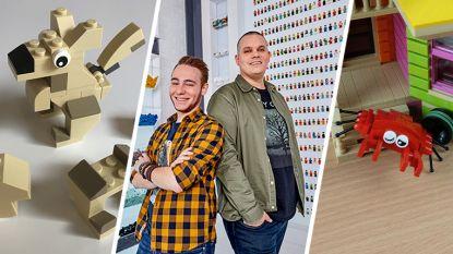 Björn en Corneel van 'LEGO Masters' tonen hoe je krab en kangoeroe bouwt
