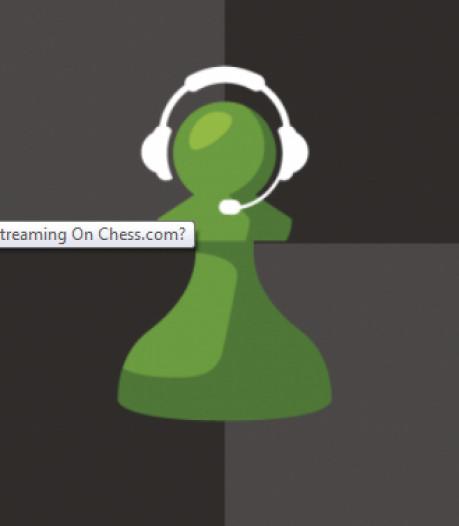 Zeeuwse schakers bundelen nu online hun krachten