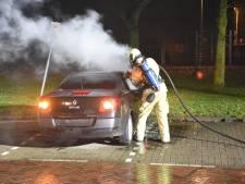Drie auto's in brand in Hoograven