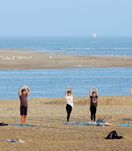 Yoga met een zeehond als publiek: ook sporters maken gebruik van de Zeeuws-Vlaamse stranden